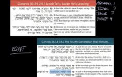 Rabbi Soloveitchik's Theory