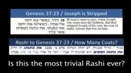 Joseph's Undershirt