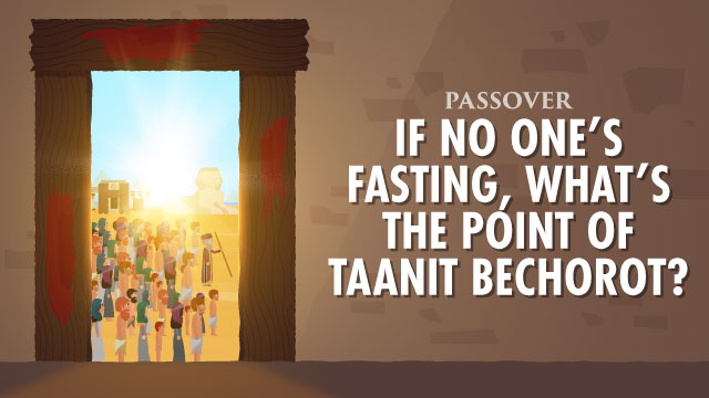 Why We Observe The Fast Of The Firstborn Before Passover