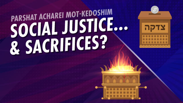 Social Justice...And Sacrifices?