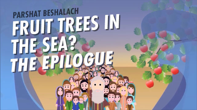 Fruit Trees In The Sea? The Epilogue