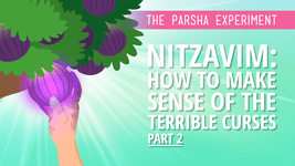 Nitzavim: How To Make Sense Of The Terrible Curses II