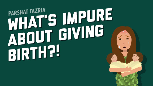 What's Impure About Giving Birth?!