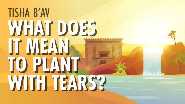 What Does It Mean To Plant With Tears?