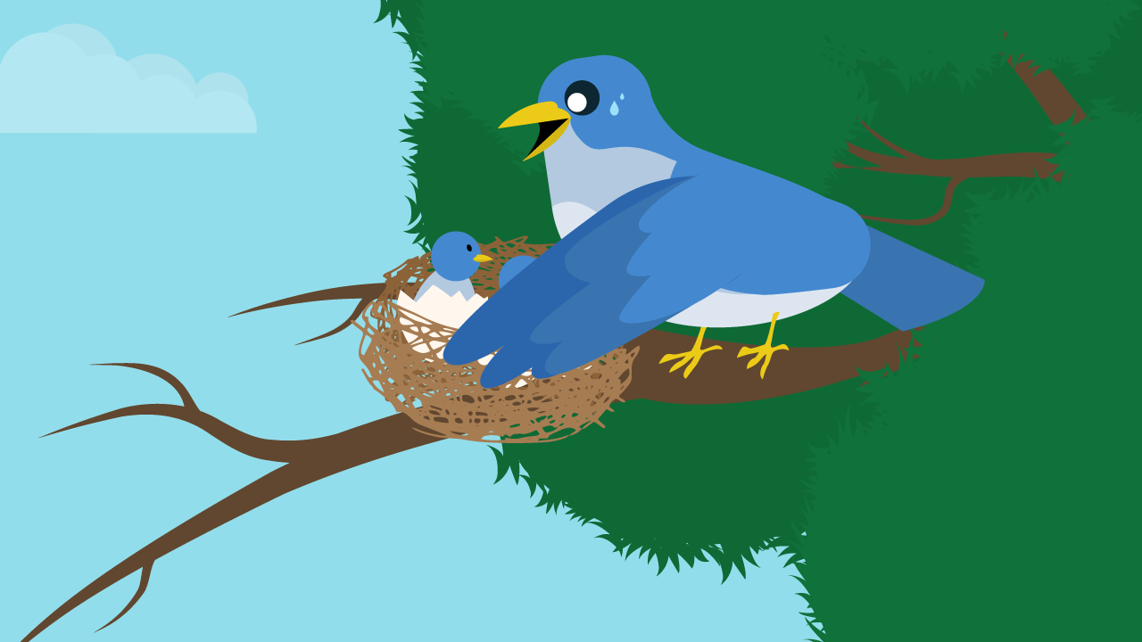 Tracing the Nest To Jacob and Esau