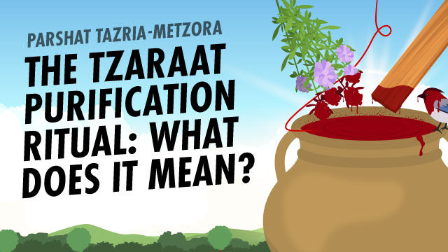 The Tzaraat Purification Ritual: What Does It Mean?