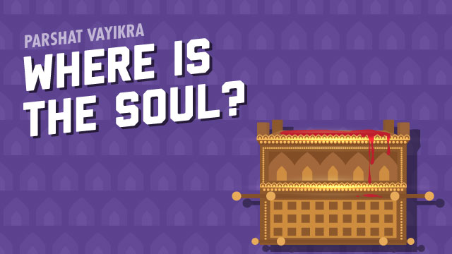 Where Is The Soul?