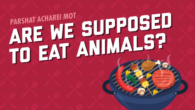 Are We Supposed To Eat Animals?
