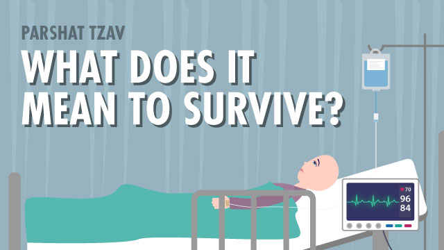 What Does It Mean To Survive?