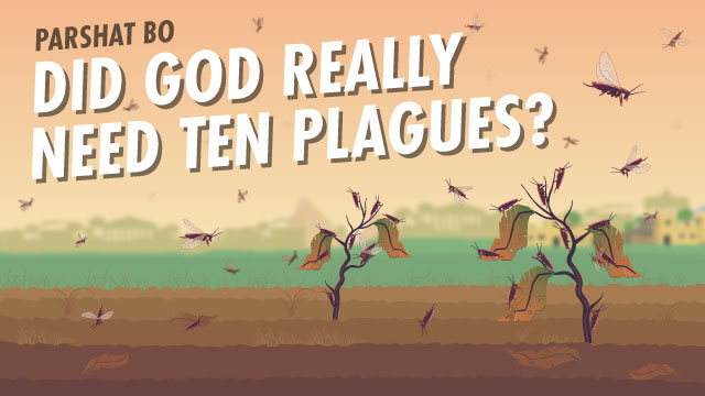 Did God Really Need Ten Plagues?